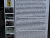 Rolex Monterey Motorsport Reunion 2014 (187)