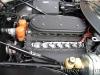 2015-05-23 CdEVdE 365 GTB4 Spyder Scaglietti - 15297 (23)