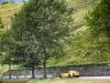 180474-car-cavalcade-mont-blanc